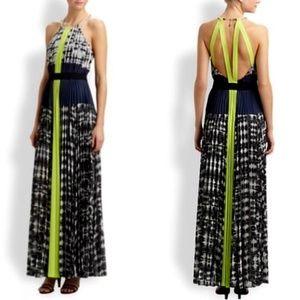 BCBG Max Azria Constantine Maxi Dress, Size XXS